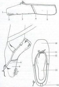 anatomyofpointe