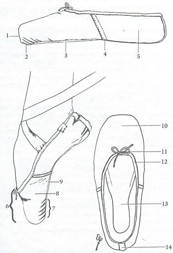The Anatomy Of A Pointe Shoe Manyet Dance
